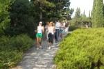 Нордическая ходьба (3)